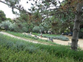 Austrian Gardens